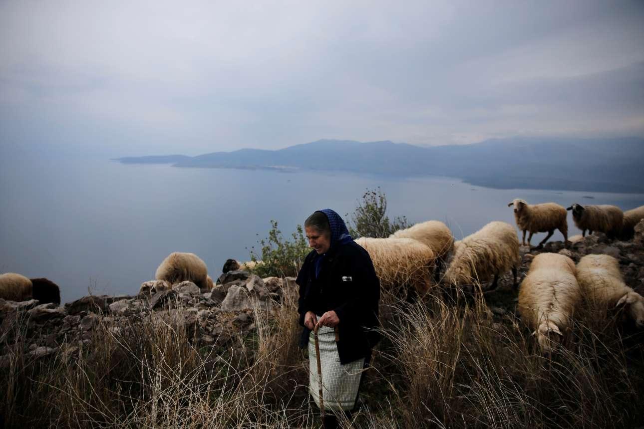 Τρίτη, 20 Φεβρουαρίου, Ελλάδα. Γυναίκα βοσκός με τα πρόβατά της σε βουνό κοντά στην Ιτέα