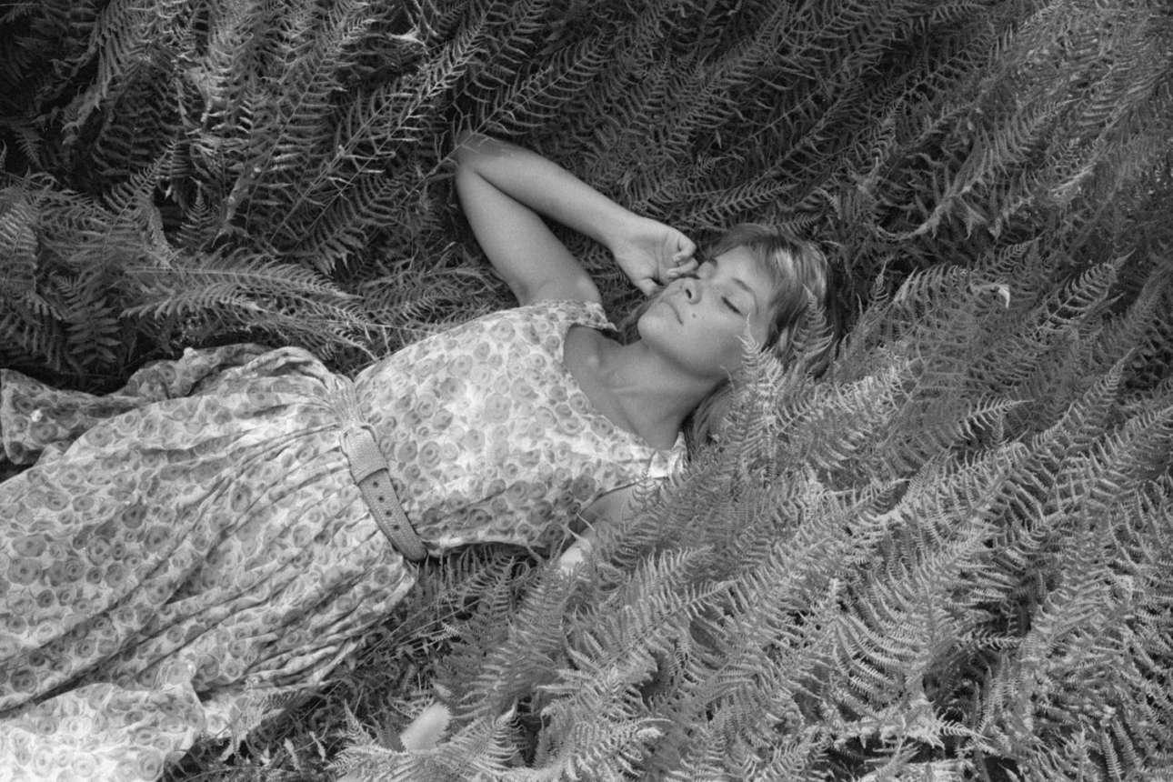 Μοντέλο ξαπλώνει ανάμεσα σε φτέρες, σε φωτογράφιση μόδας που έγινε κάπου ανάμεσα στο 1940 και το 1969
