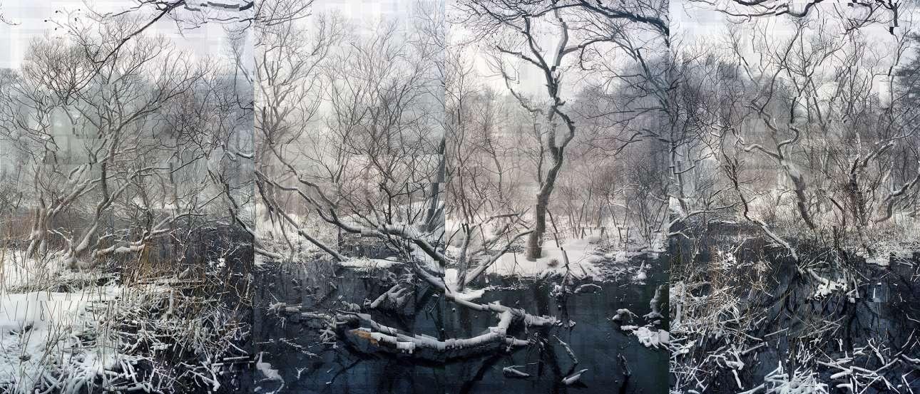 Πρώτη Θέση, Δημιουργική Κατηγορία. «Στα χιονισμένα τοπία της Φουκουσίμα, έχω αποτυπώσει τον αόρατο πόνο της ακτινοβολίας. Αντλώντας έμπνευση από τα σχέδια των ιαπωνικών χαρακτικών, ήθελα να συλλάβω τις φευγαλέες στιγμές, τις διαρκώς μεταβαλλόμενες αντιλήψεις της φύσης, όπου συσσωρευέται η περισσότερη ακτινοβολία. Χρησιμοποιώντας την τεχνική superimpression, θέλω μέσα από τις εικόνες μου να δείξω την αλλοίωση του ατόμου» γράφει ο φωτογράφος στη συνοδευτική λεζάντα