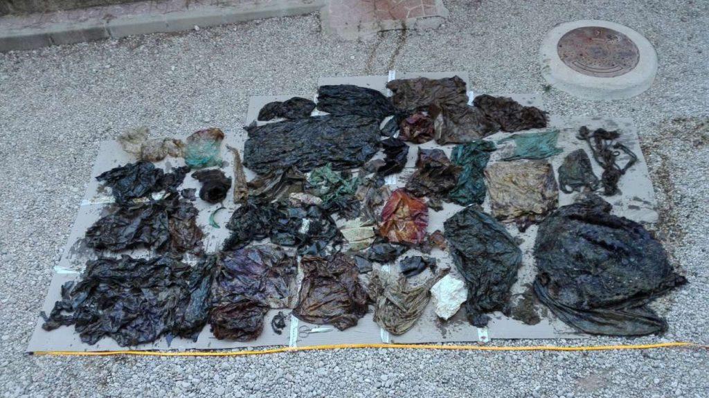 Αποτέλεσμα εικόνας για φαλαινα σακουλες