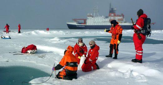 Mehrer Gruppen knüpfen sich den Lebensraum Meereis bei jeder Eisstation vor: Wasserproben aus den Schmelztümpeln, das Eis selber sowie das Wasser darunter, alles wird nach nach Pflanzen, Tieren und Mikroorganismen durchsucht. Foto: Mar Fernandez, Alfred-Wegener-Institut