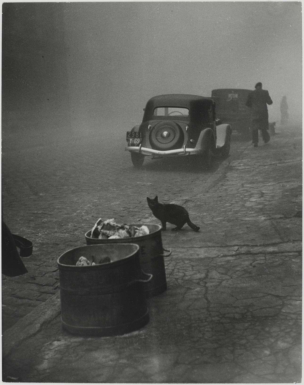 Τοπίο στην ομίχλη... ένα ατμοσφαιρικό πρωινό στη Λυών της Γαλλίας, 1950