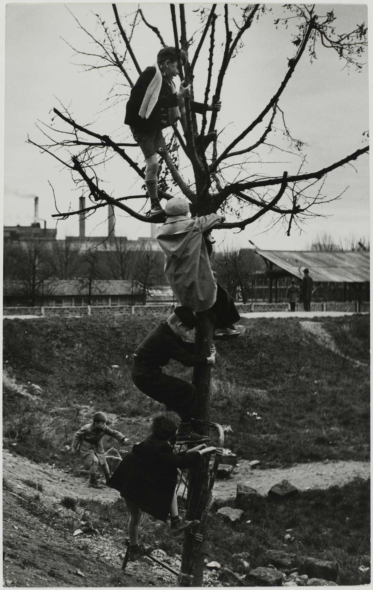 Πιτσιρίκια παίζουν σε ένα παρατημένο μέρος, 1950
