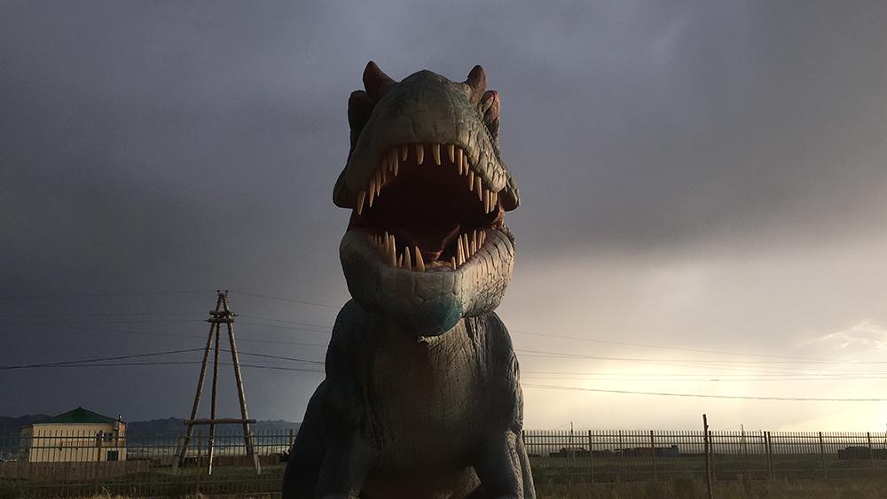 Πρώτη θέση στην κατηγορία Ταξίδι. Ταξιδεύοντας στο Δρόμο του Μεταξιού, η φωτογράφος βρέθηκε σε αυτή την ερημική περιοχή, γνωστή για τα πρώτα ίχνη δεινοσαύρων που βρέθηκαν εκεί
