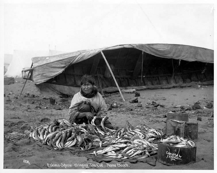 Eskimo_woman_stringing_cod_with_umiak_in_background,_Nome,_1904_(NOWELL_16)-wikipedia