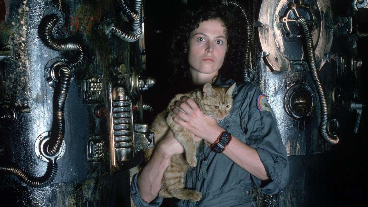 H Σιγκούρνεϊ Γουίβερ με τον γατούλη Τζόνεσι στο «Allien» (1979) του Ρίντλεϊ Σκοτ. Ορισμένοι κριτικοί κινηματογράφου θεωρούν ότι ο γάτος είναι μια ενσάρκωση του ίδιου του σκηνοθέτη, καθώς κυκλοφορούσε άνετα στο διαστημόπλοιο «Νοστρόμος» αλλά και στο σετ των γυρισμάτων!