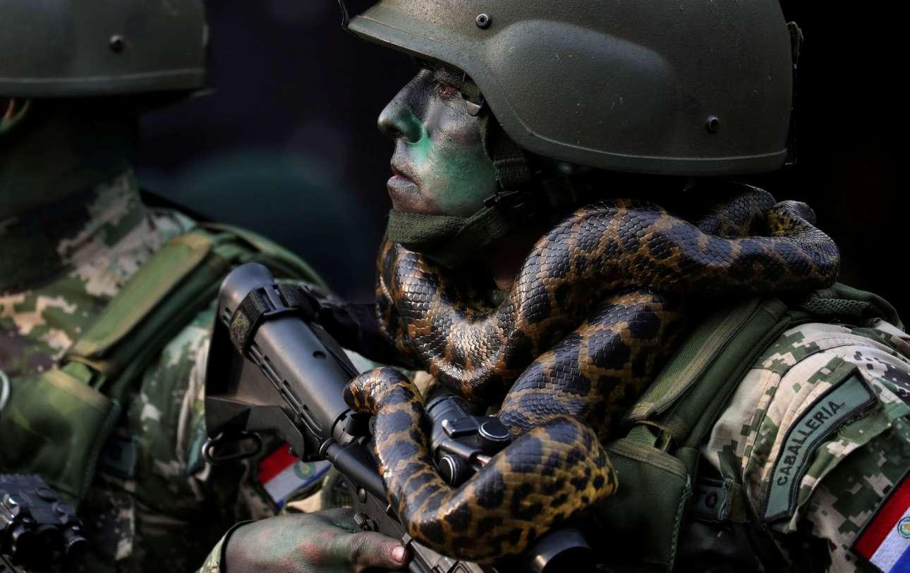16 Αυγούστου. Στρατιώτης των Ειδικών Δυνάμεων της Παραγουάης παρελαύνει με ένα φίδι τυλιγμένο στον λαιμό του, μπροστά από τον πρόεδρο της χώρας Μάριο Αμπντο Μπενίτες