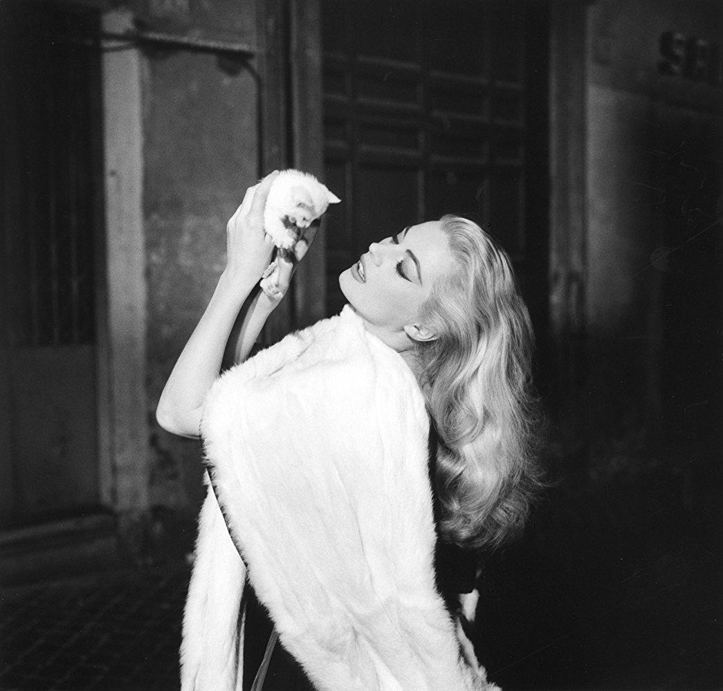 H Ανίτα Εκμπεργκ ως Σίλβια στο θρυλικό «La Dolce Vita» (1960) του Φεντερίκο Φελίνι. Το παιχνίδι με το γατάκι επισφραγίζει την εμβληματική σκηνή με την καλλονή στο συντριβάνι της Φοντάνα ντι Τρέβι