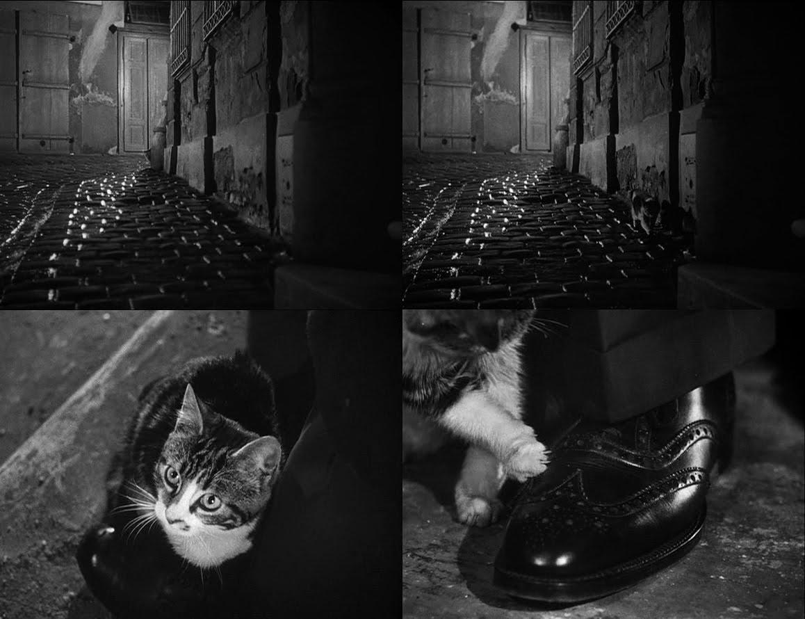 Μια από τις πιο κλασικές σκηνές παρουσίασης χαρακτήρα στον κινηματογράφο στον εμβληματικό «Τρίτο Ανθρωπο» (1949) του Κάρολ Ριντ. Μια γάτα πηγαίνει στο πόδι του Χάρι Λάιν, τον οποίο ενσαρκώνει ο Ορσον Ουέλς. Βέβαια χρησιμοποιήθηκαν διαφορετικά γατάκια αλλά τότε λίγοι το κατάλαβαν