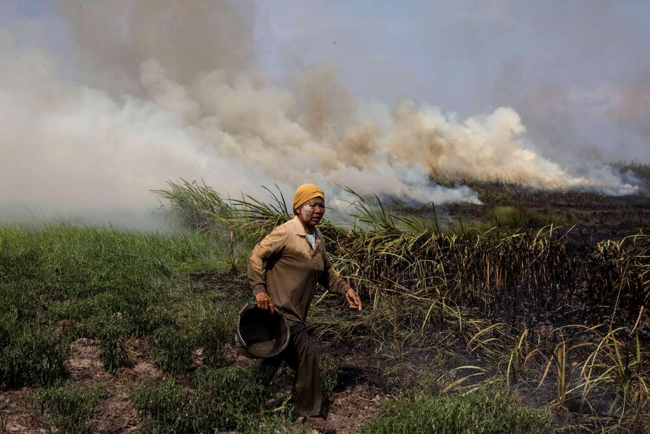 Δευτέρα, 17 Σεπτεμβρίου, Ινδονησία. Χωρικός προσπαθεί να σβήσει πυρκαγιά μικρής έκτασης στην περιοχή Ογκάν Ιλίρ, της επαρχίας Σουματέρα Σελατάν