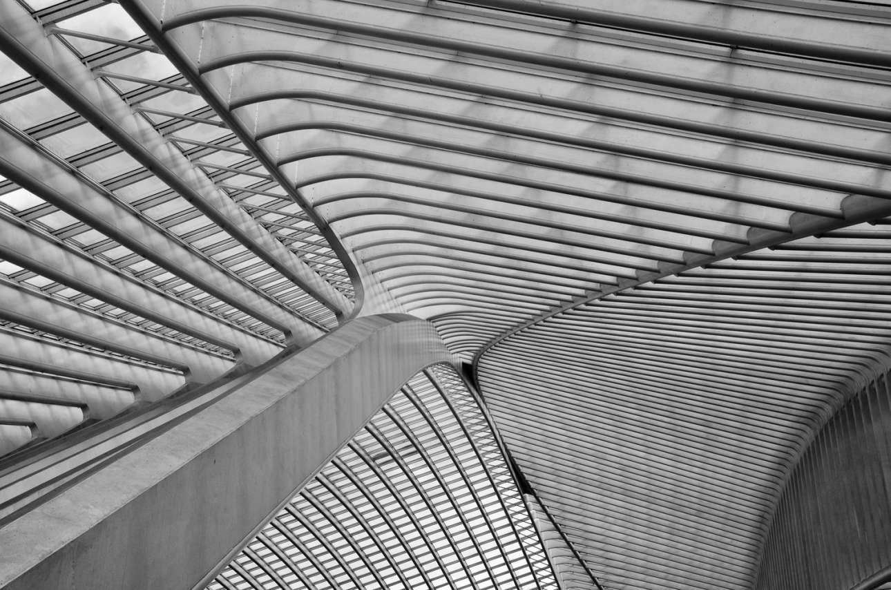 Η στέγη του σιδηροδρομικού σταθμού «Liège-Guillemins» στη Λιέγη του Βελγίου, που σχεδίασε ο Σαντιάγο Καλατράβα