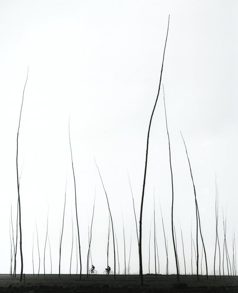 Εκπληκτική φωτογραφία του Ογκούστο Κανταμέσα με τίτλο «Κοντινός ορίζοντας»