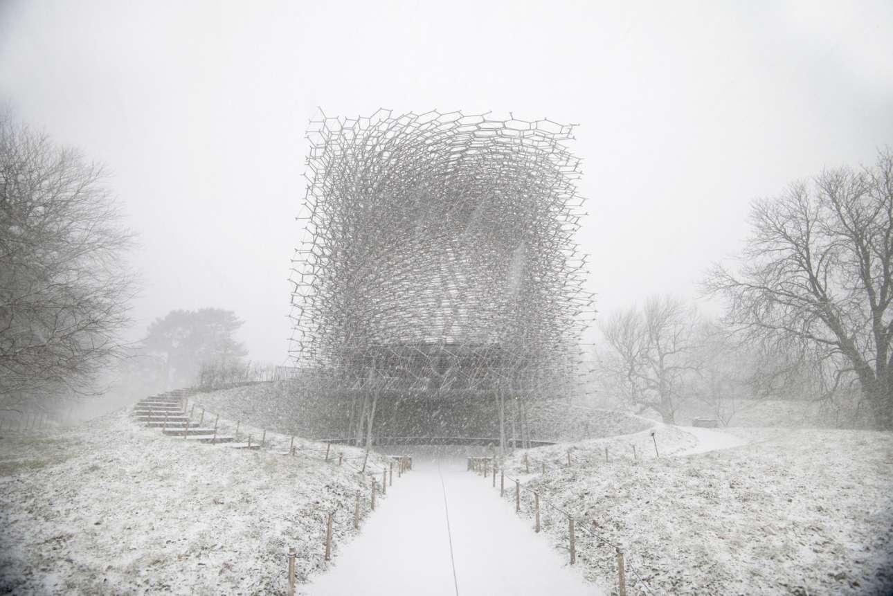 «Η κυψέλη» στο Κιου Γκάρντεν, τους Βασιλικούς Βοτανικούς Κήπους στο νοτιοδυτικό Λονδίνο, που σχεδιάστηκε από τον Βόλφγκανγκ Μπάτρες