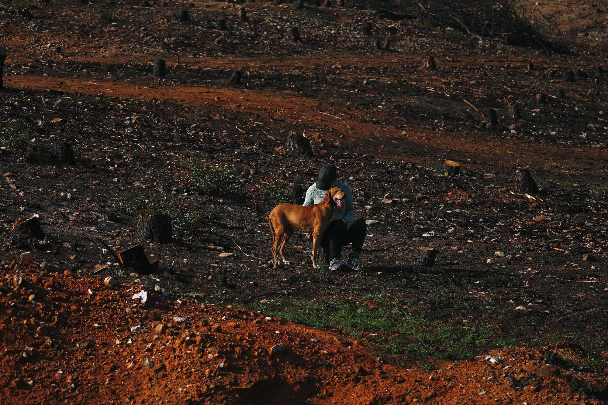 Κάτοικος της περιοχής με τον σκύλο σε θέση... παρατηρητών