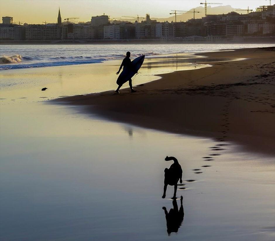Τετάρτη, 14 Νοεμβρίου, Ισπανία. Νεαρός σέρφερ βγαίνει από τη θάλασσα ενώ ένας σκύλος τρέχει προς τον φωτογράφο, ξημερώματα, στην παραλία της Ondarreta, στο Σαν Σεμπαστιάν