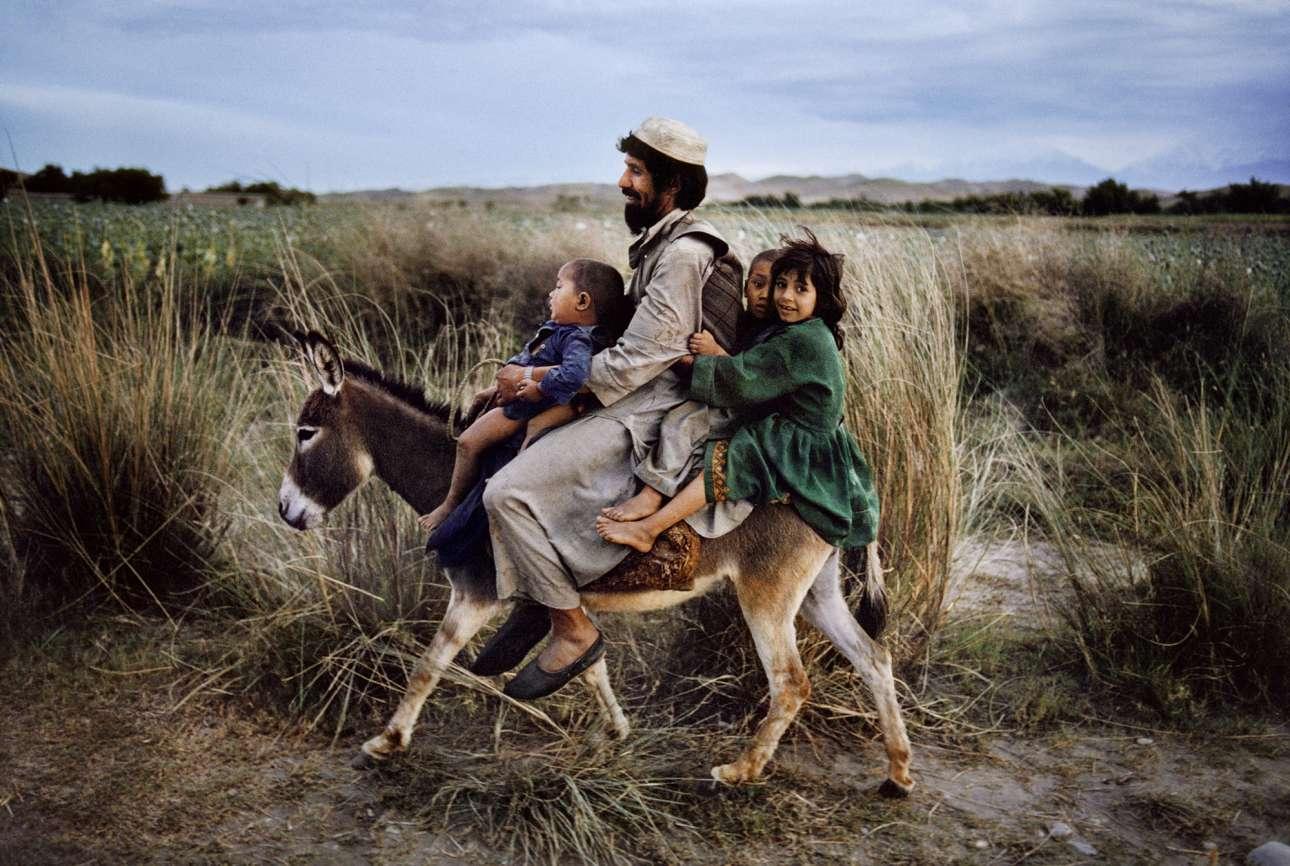 Πατέρας με τα τρία παιδιά του επιστρέφουν στο σπίτι από το παζάρι καβάλα σε γαϊδουράκι, στην αρχαία πόλη Μαϊμάνα του Αφγανιστάν, το 2013