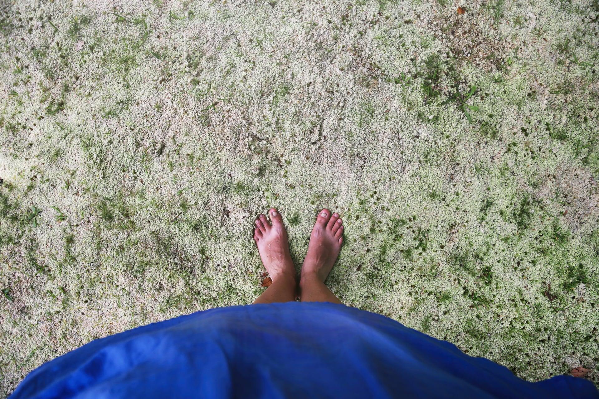 H Αντελα Νιστόρα διηγείται την ιστορία πίσω από την παραπάνω εικόνα. «Εκείνη την ημέρα στο νησί Σάο Μιγκέλ (Αζόρες, Πορτογαλία) πάτησα πάνω στο πιο απίστευτα μαλακό στρώμα από βρύα που είχα αισθανθεί ποτέ κάτω από τα πόδια μου. Μέχρι το 2016, που τραβήχτηκε η φωτογραφία, ήμουν 31 ετών και είχα μετακομίσει περισσότερες από 30 φορές σε πέντε διαφορετικές χώρες. Λένε ότι το σπίτι είναι όπου βρίσκεται η καρδιά σου. Η καρδιά μου χωρίζεται σε κομμάτια σε όλο τον κόσμο, αλλά ένα μεγάλο μέρος της θα είναι πάντοτε στα σύνορα των Αζορών»