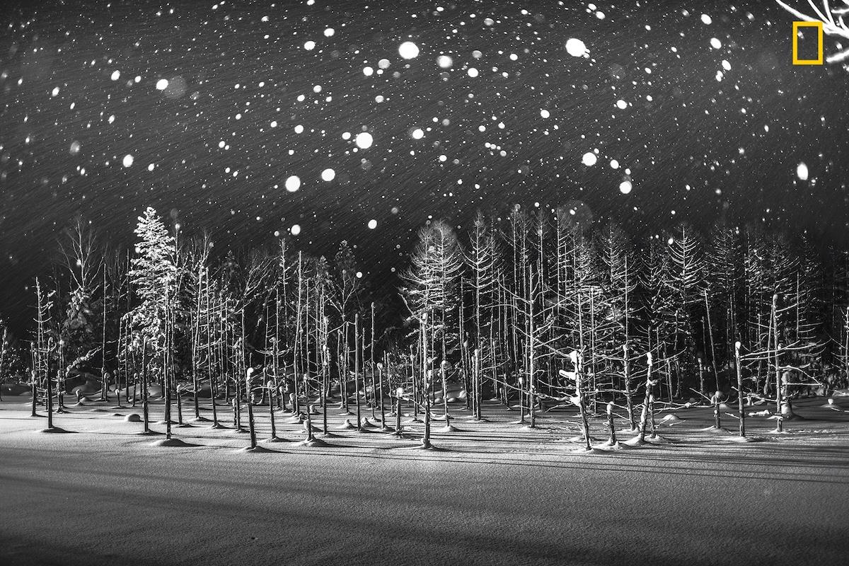 Τιμητική διάκριση στην κατηγορία Τόποι. Ατμοσφαιρική λήψη από τη δημοφιλή τεχνητή «Μπλε Λίμνη» στο νησί Χοκάιντο της Ιαπωνίας, μία παγωμένη νύχτα του χειμώνα