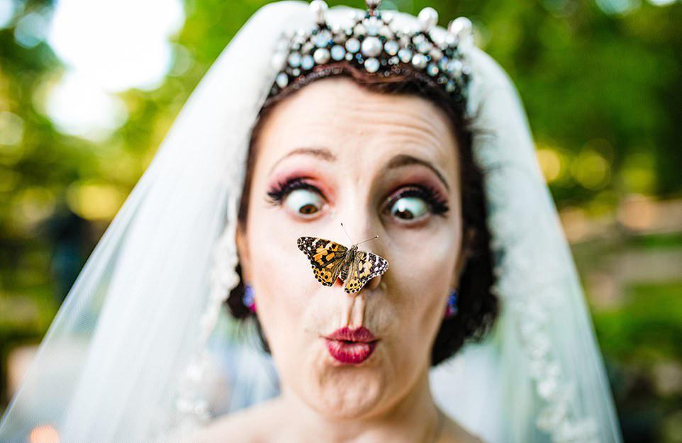 Ενας απρόσκλητος επισκέπτης προσγειώνεται στη μύτη της νύφης