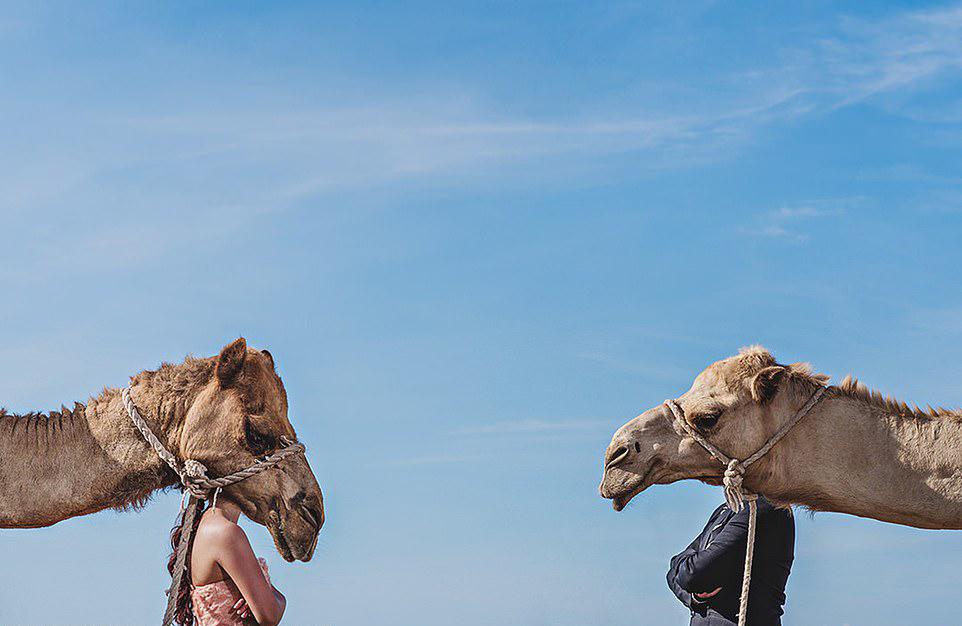 Νύφη και γαμπρός μεταμορφώνονται σε καμήλες, σε μία δημιουργική λήψη