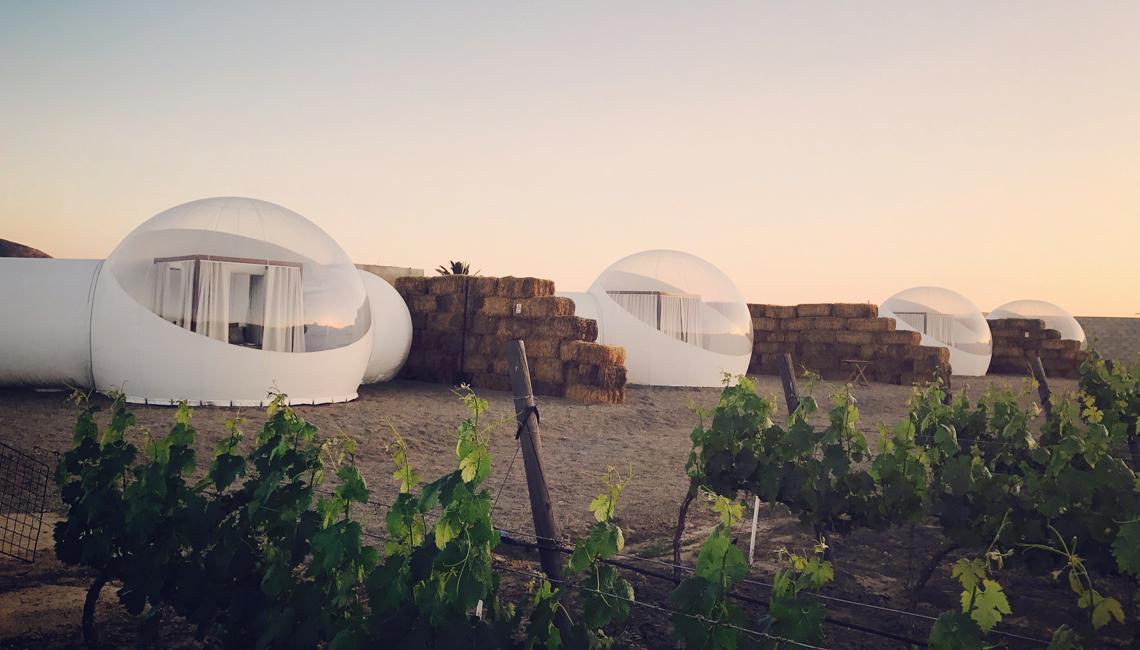 Ανάμεσα σε αμπέλια «ξεφυτρώνουν» οι φούσκες του ξενοδοχείου «Καμπέρα», στην Κοιλάδα της Γουαδελούπης - την οινοπαραγωγική περιοχή του Μεξικού