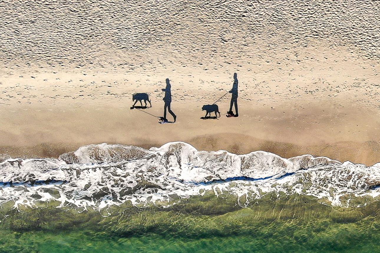 Τρίτη θέση: «2 άνθρωποι, 2 σκύλοι και 4 σκιές» κάνουν βόλτα σε παραλία της Οδησσού, στην Ουκρανία
