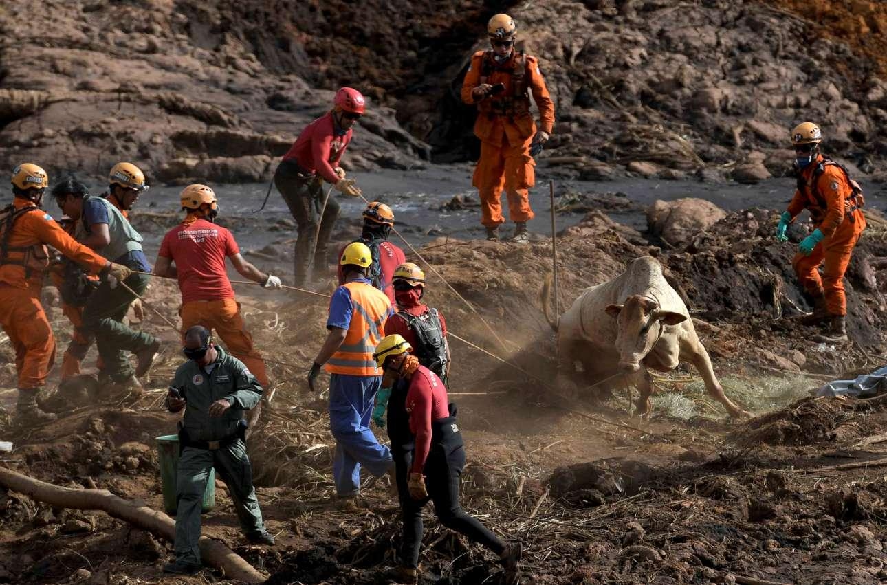 Τρίτη, 29 Ιανουαρίου, Βραζιλία. Διασώστες επί το έργον μετά την κατάρρευση φράγματος της μεταλλευτικής βιομηχανίας Vale στην πόλη Μπρουματζίνιου που στοίχισε τη ζωή σε εκατοντάδες ανθρώπους