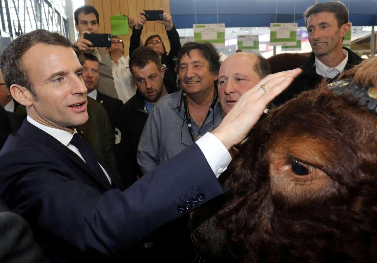 Σάββατο, 23 Φεβρουαρίου, Γαλλία. Ο Εμανουέλ Μακρόν συναντά τον «Τζόκερ», έναν θηριώδη ταύρο, κατά τη διάρκεια της επίσκεψής του στη μεγάλη έκθεση αγροτικών-κτηνοτροφικών προϊόντων που διεξάγεται αυτές τις ημέρες στο Port de Versailles στο Παρίσι