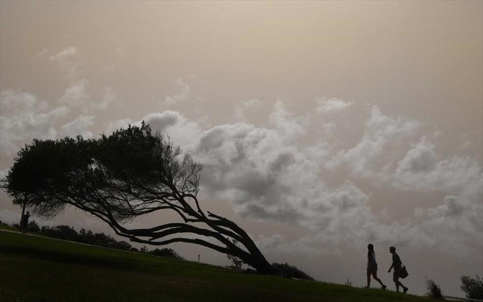 Τετάρτη, 13 Φβρουαρίου, ΗΠΑ. Σαν πίνακας ζωγραφικής: ένα ζευγάρι απολαμβάνει την βόλτα του ενώ νυχτώνει στο Σίδνεϊ