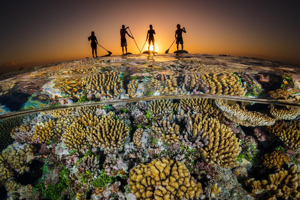 Δεύτερη θέση στην κατηγορία Ευρυγώνια Λήψη. Μία παρέα κάνει paddle στον Ειρηνικό Ωκεανό, καθώς ο ήλιος δύει πάνω από το νησί Χαπάι στην Τόνγκα