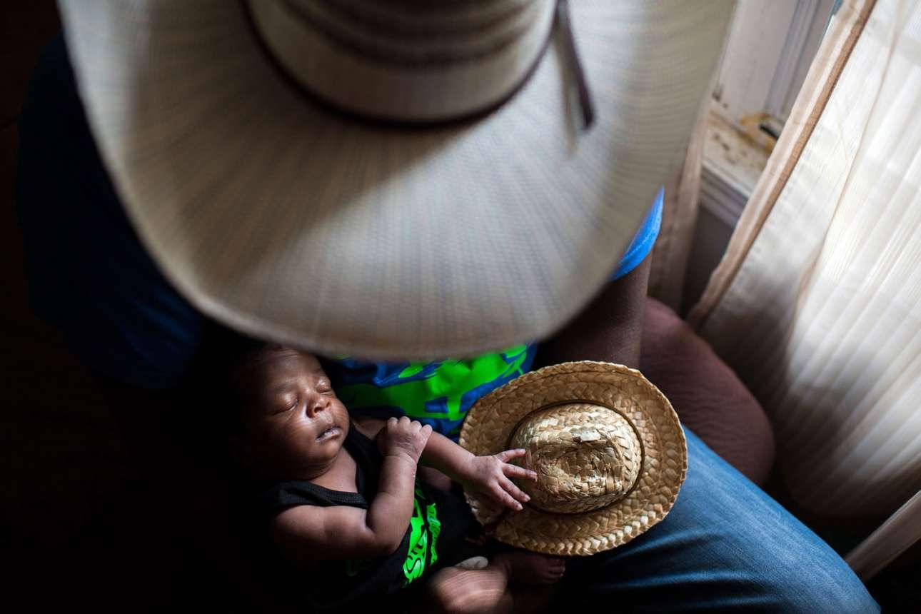 «Ο νεότερος καουμπόι στην Πόλη», κατηγορία Αμερικανική Εμπειρία. Ο Τζέσι καλωσορίζει το νέο μέλος της οικογένειας στο σπίτι του στο Κλίβελαντ, Μισισίπι