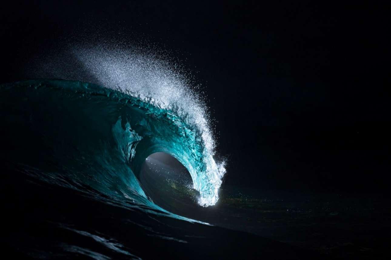 «Νυχτόβια Πρόσκρουση» ο τίτλος της εκπληκτικής φωτογραφίας, για την οποία ο Μάθιου Τιλντεσλέι χρησιμοποίησε φλας για να αναδείξει περίτεχνες λεπτομέρειες που δύσκολα διακρίνει κάποιος την ημέρα