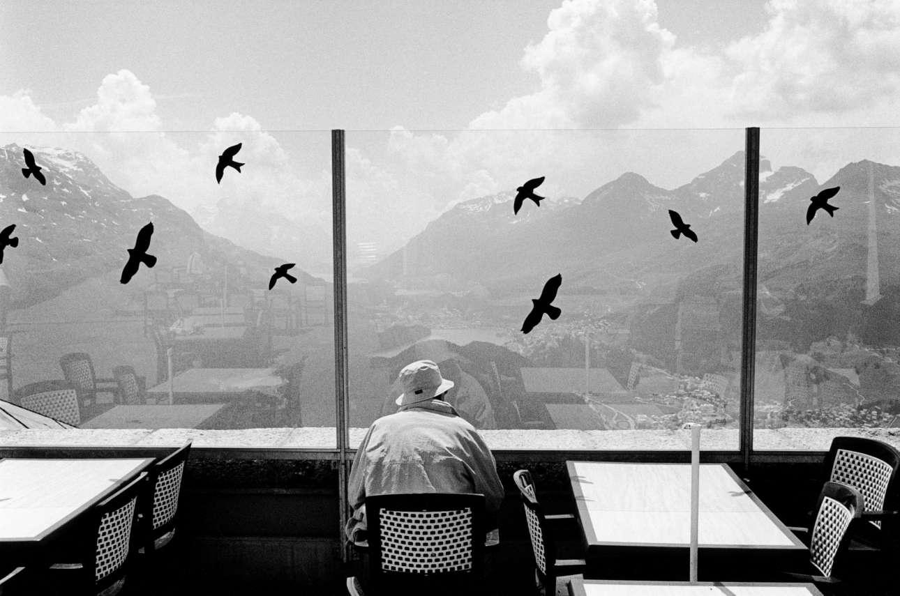 Ενας άνδρας απολαμβάνει τη θέα στα βουνά του  Σεν Μόριτζ από την βεράντα αλπικού εστιατορίου. Αυτοκόλλητα με ψεύτικα πουλιά στο τζάμι χρησιμοποιούνται για να αποτρέπουν τα αληθινά από το να πέσουν πάνω του