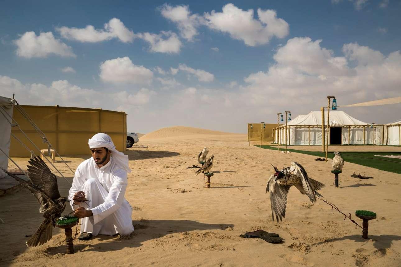Νικητής στην κατηγορία Φύση (Ιστορίες). Βάση για κυνήγι γερακιών στην έρημο του Αμπού Ντάμπι. Τα τελευταία 60 χρόνια που έχουν αλλάξει τόσο ριζικά τα Ηνωμένα Αραβικά Εμιράτα, η ενασχόληση με την εκτροφή γερακιών θεωρείται σύνδεσμος με το παρελθόν και τον αρχαίο πολιτισμό των Βεδουίνων