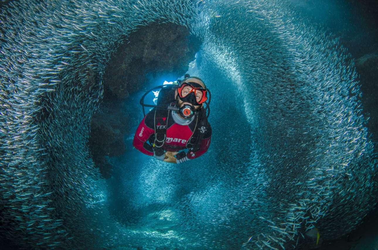 Νικητής στην κατηγορία Δύτες. Κολυμπώντας ανάμεσα σε αθερίνες στα νησιά Κέιμαν