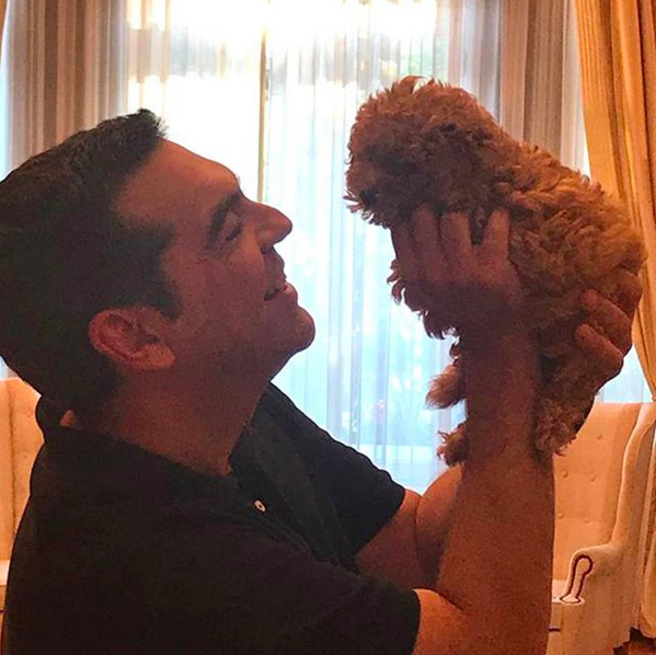 Ιούνιος 2019. Καθώς η προεκλογική εκστρατεία δεν πάει καλά και οι δημοσκοπήσεις προβλέπουν μια νέα συντριβή του ΣΥΡΙΖΑ, ο Αλ. Τσίπρας επιστρατεύει μια... σκυλίτσα μπας και συγκινήσει κάποιους. «Η νέα μου φίλη» έγραψε στο Instagram, καλωσοριζοντας το κουτάβι στο Μαξίμου