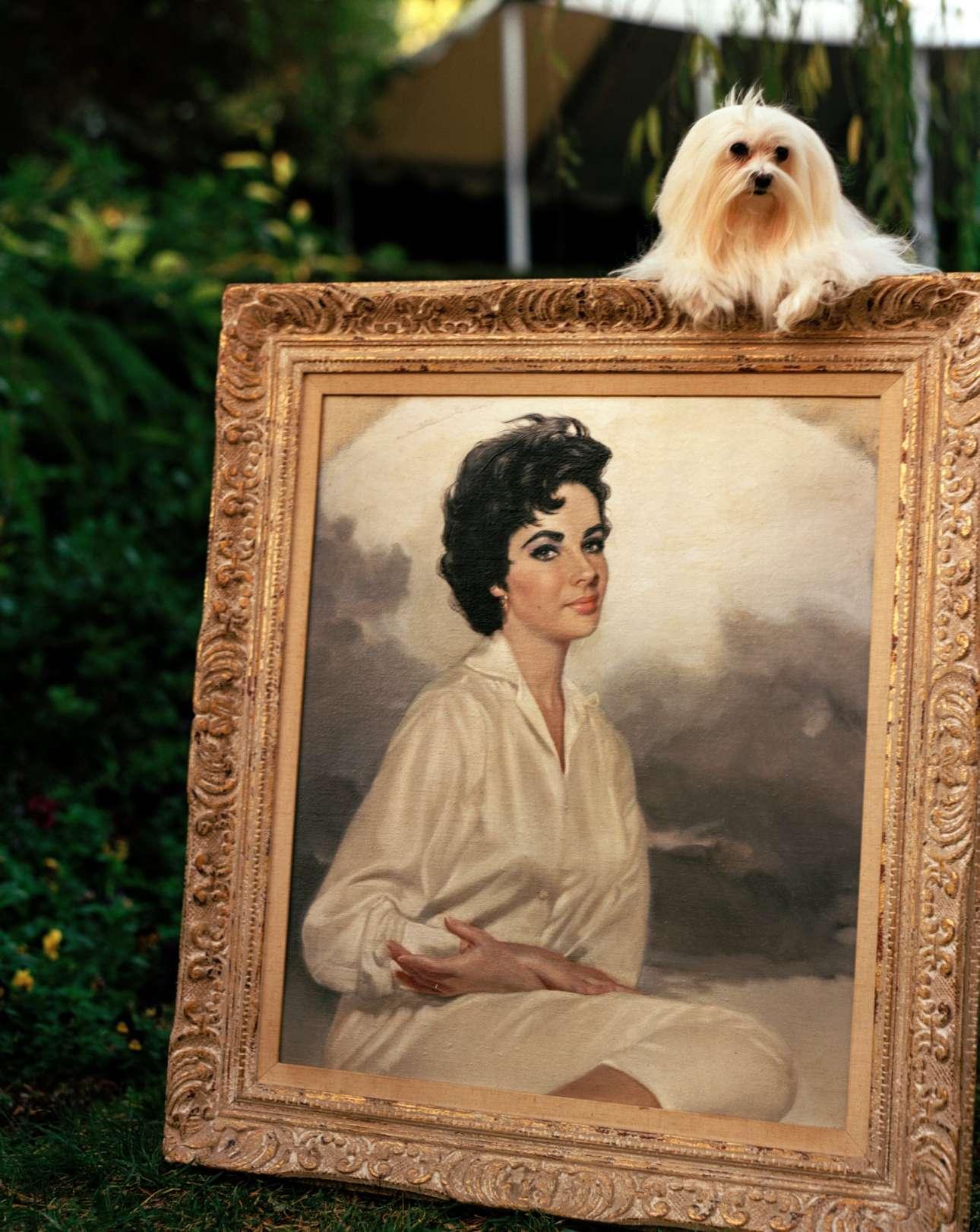Καλιφόρνια, 2000: Η Σούγκαρ ποζάρει μαζί με ένα πορτρέτο της αγαπημένης της Ελίζαμπεθ Τέιλορ