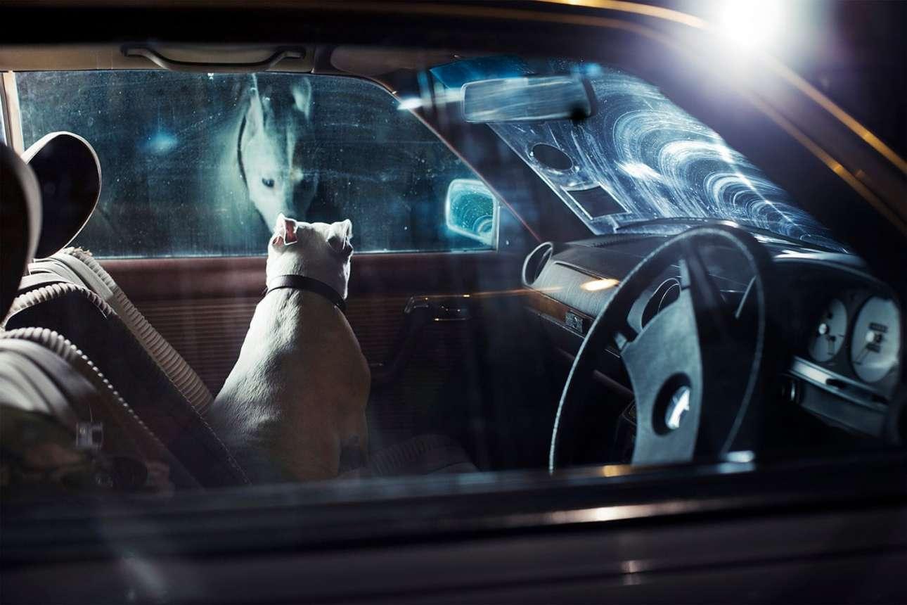 Ο μυστηριώδης Μπόουνς κοιτάζει έξω από το παράθυρο του αυτοκινήτου