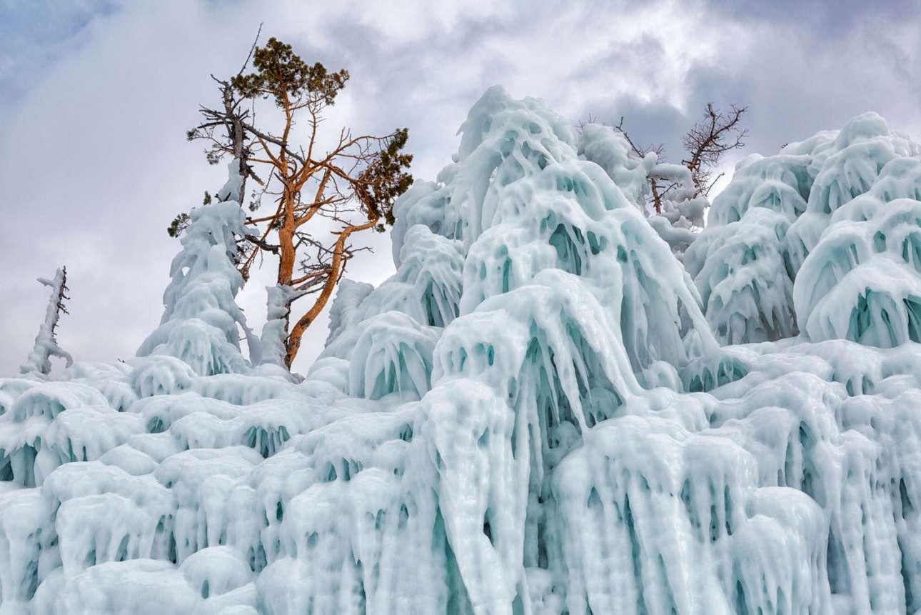 Δέντρα στην όχθη της λίμνης που έχουν παγώσει, θυμίζουν... φαντάσματα