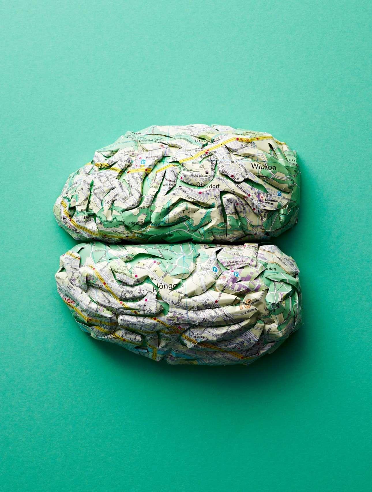 Ο εγκέφαλος ως χάρτινο έργο τέχνης