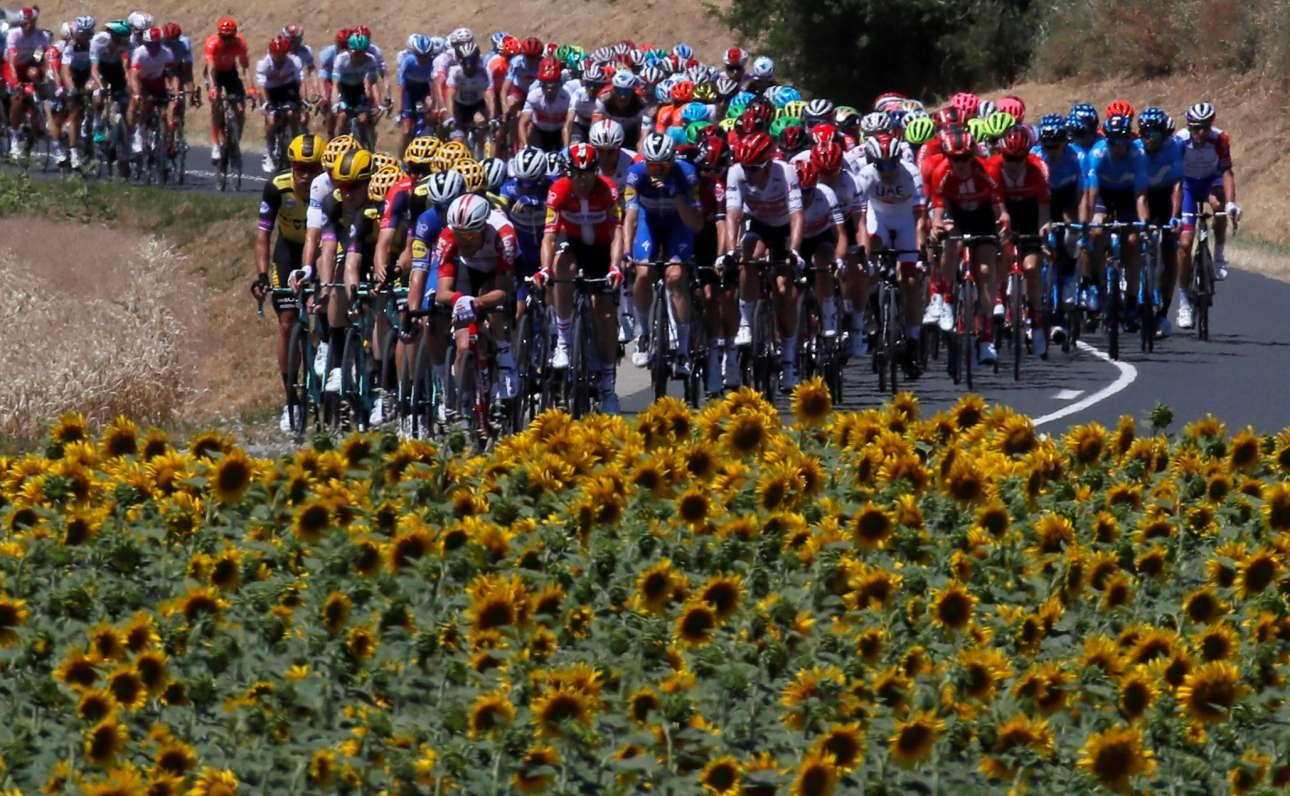 Στιγμιότυπο από τον Ποδηλατικό Γύρο της Γαλλίας (Tour de France). Οι ποδηλάτες περνούν μέσα από χωράφια κατευθυνόμενοι από τη Ρεν στη Νανσί