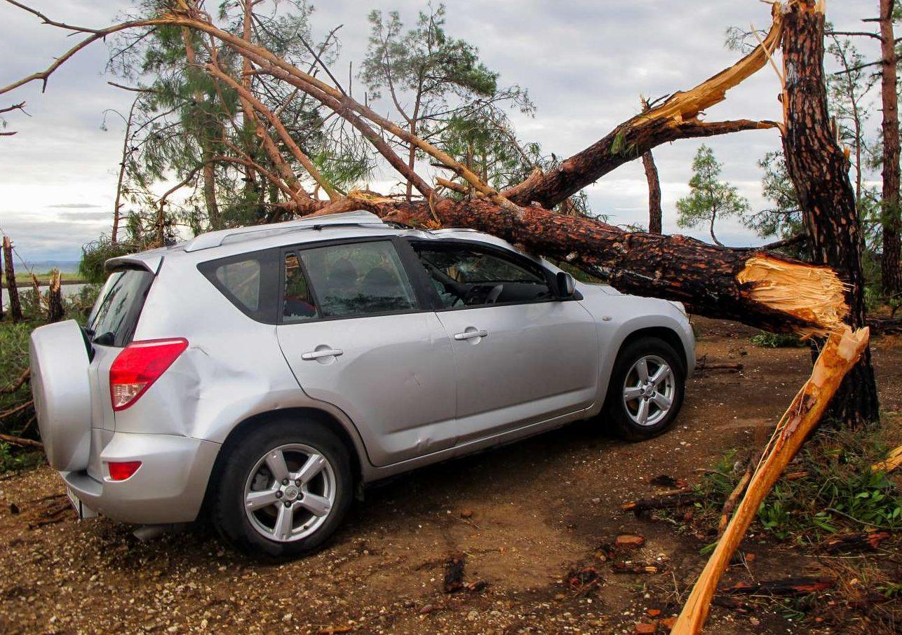 Πολλά δέντρα καταπλάκωσαν τα αυτοκίνητα - εδώ στη Σωζόπολη