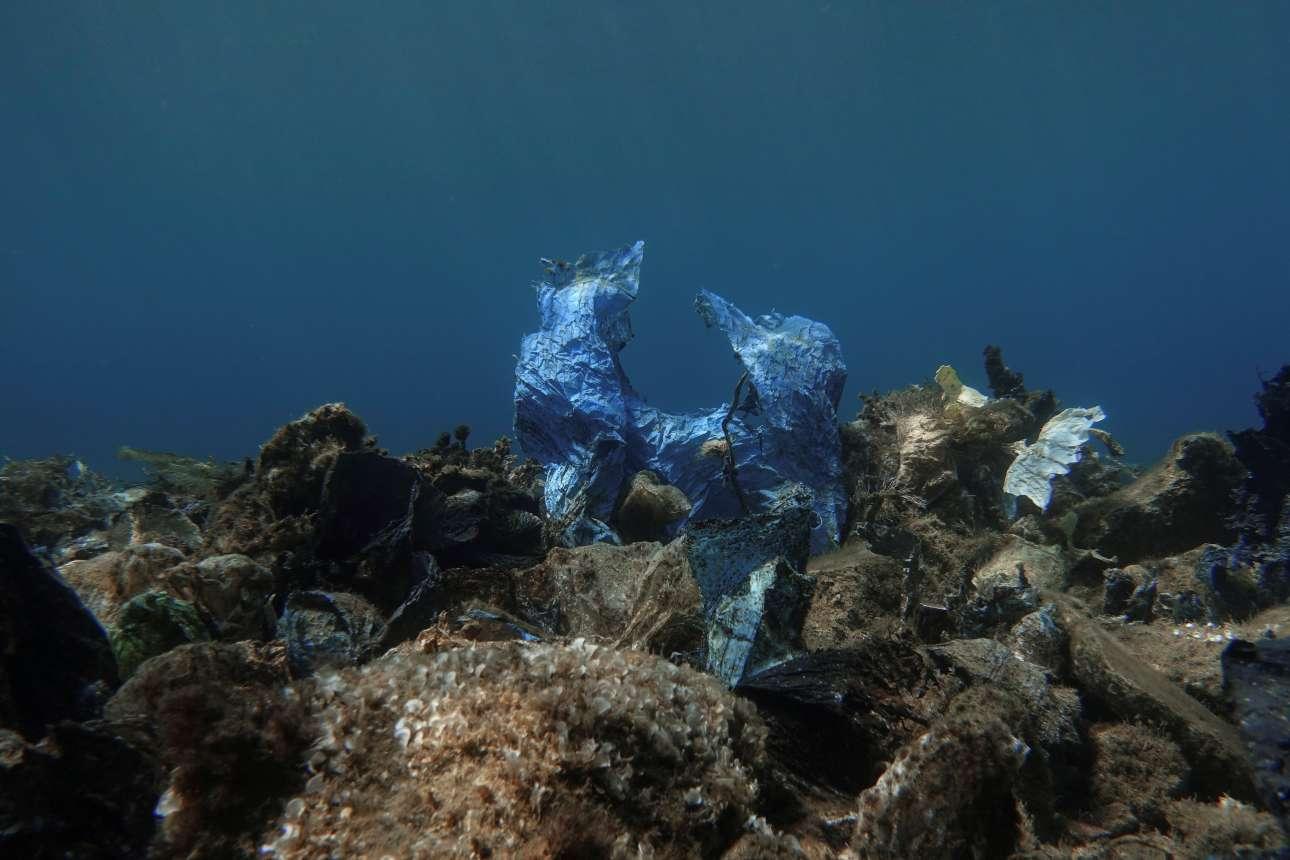 Σαν απόκοσμο γλυπτό, μία μπλε πλαστική σακούλα ορθώνεται στον βυθό, από τον σορό των σκουπιδιών