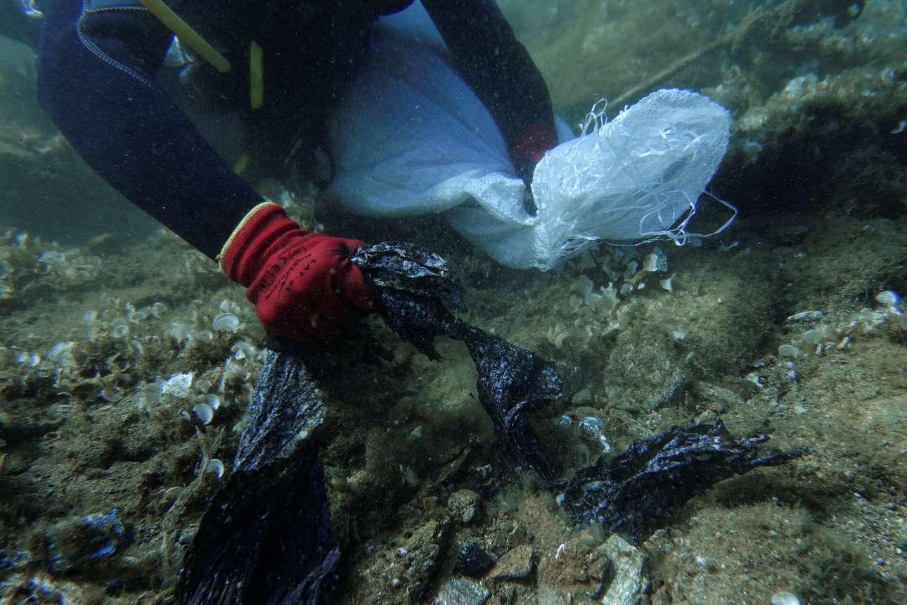Οι σακούλες έβγαιναν με την... οκά, σαν κοράλλια μέσα από τις πέτρες