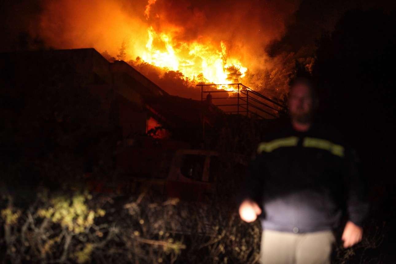 Ανδρας της Πολιτικής Προστασίας βαδίζει καθώς δέντρα έχουν παραδοθεί στις φλόγες
