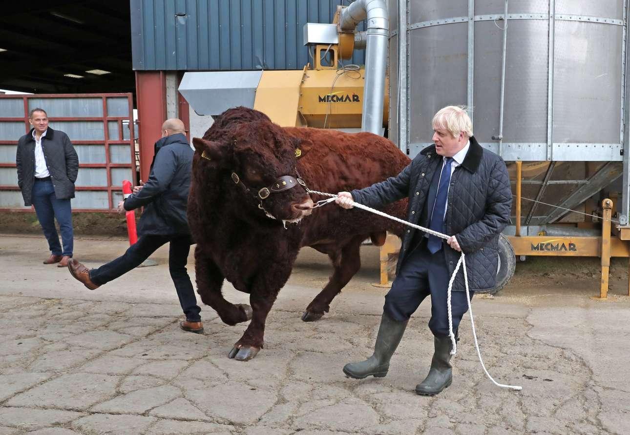 Θα μπορούσε κάλλιστα να ήταν σκηνή από σκετς των Monty Pythons – αλλά είναι ο πρωθυπουργός του Ηνωμένου Βασιλείου να προσπαθεί να κουμαντάρει έναν βούβαλο στο εκτροφείο του Ντάρνφορντ κοντά στο Αμπερντίν. Κατά τα άλλα διαπραγματεύεται με τις Βρυξέλλες