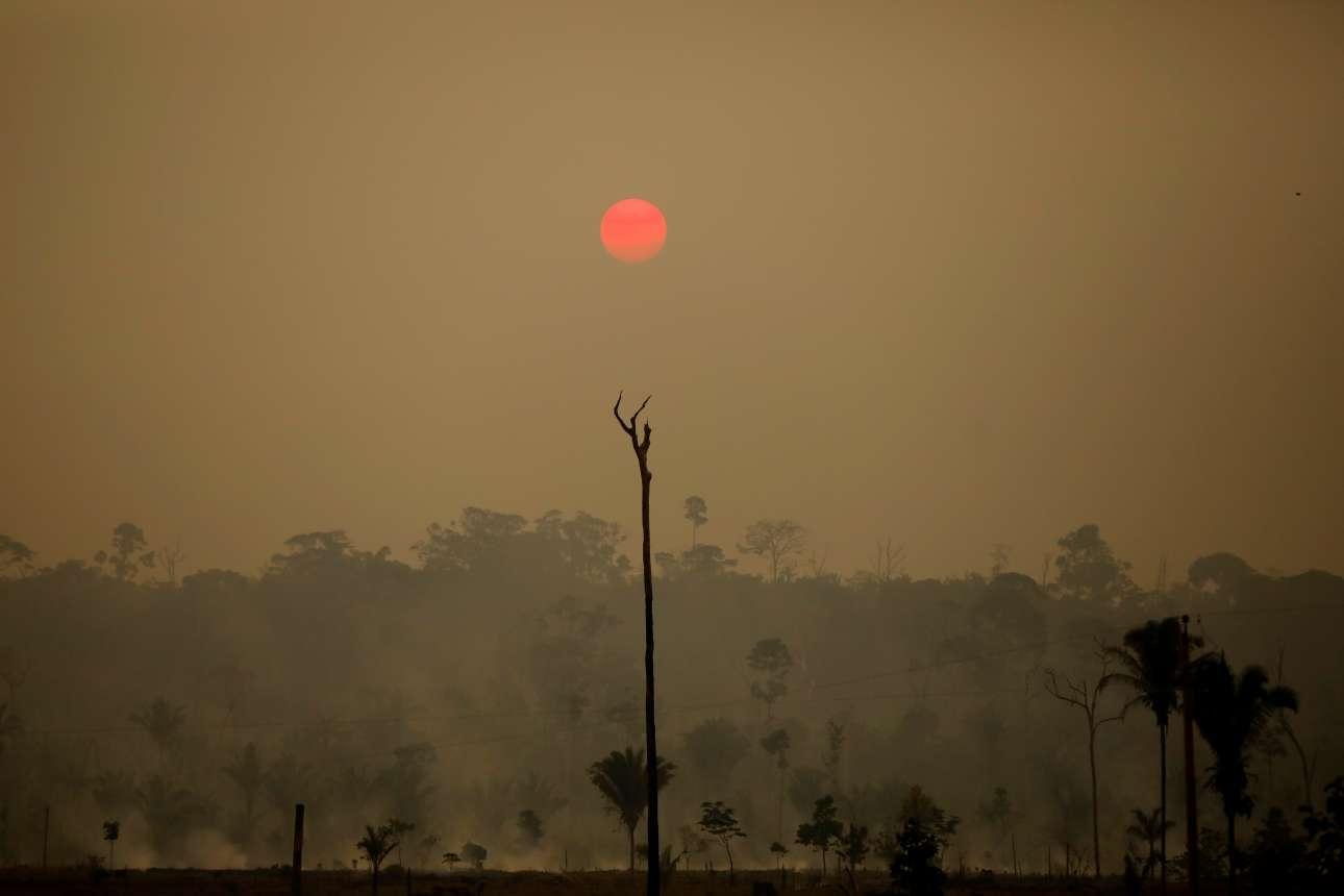 Ενα κόκκινο φεγγάρι στολίζει τον ουρανό πάνω από αποψιλωμένη περιοχή στο δάσος Bom Futuro στο Ρίο Πάρντο της Βραζιλίας. Η αποψίλωση της περιοχής του Αμαζονίου σχεδόν διπλασιάστηκε μεταξύ Ιανουαρίου - Αυγούστου και της ίδιας περιόδου το 2018, καταστρέφοντας άλλα 6.404,4 τετραγωνικά χιλιόμετρα συνολικά (έναντι 3.336,7 km2), σύμφωνα με επίσημα προσωρινά στοιχεία που έγιναν γνωστά