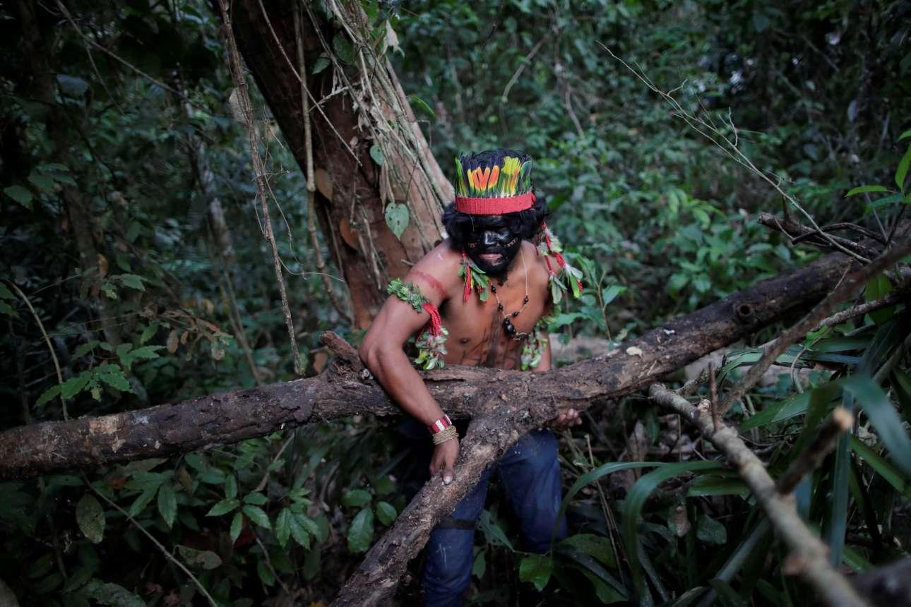 Το να διασχίσει κανείς το δάσος είναι εξαιρετικά δύσκολο λόγω της πυκνής βλάστησης, ακόμα και αν είσαι Γκουαχαχάρα!