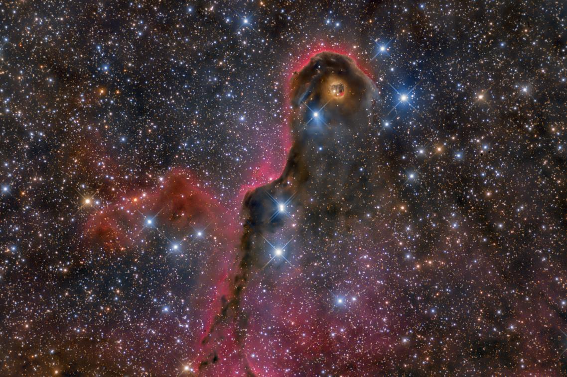 Τιμητική διάκριση στην κατηγορία Αστέρια και Νεφελώματα. Το νεφέλωμα Προβοσκίδα του Ελέφαντα είναι μέρος ενός σχηματισμού αστεριών που απέχει 2.450 έτη φωτός από τη Γη