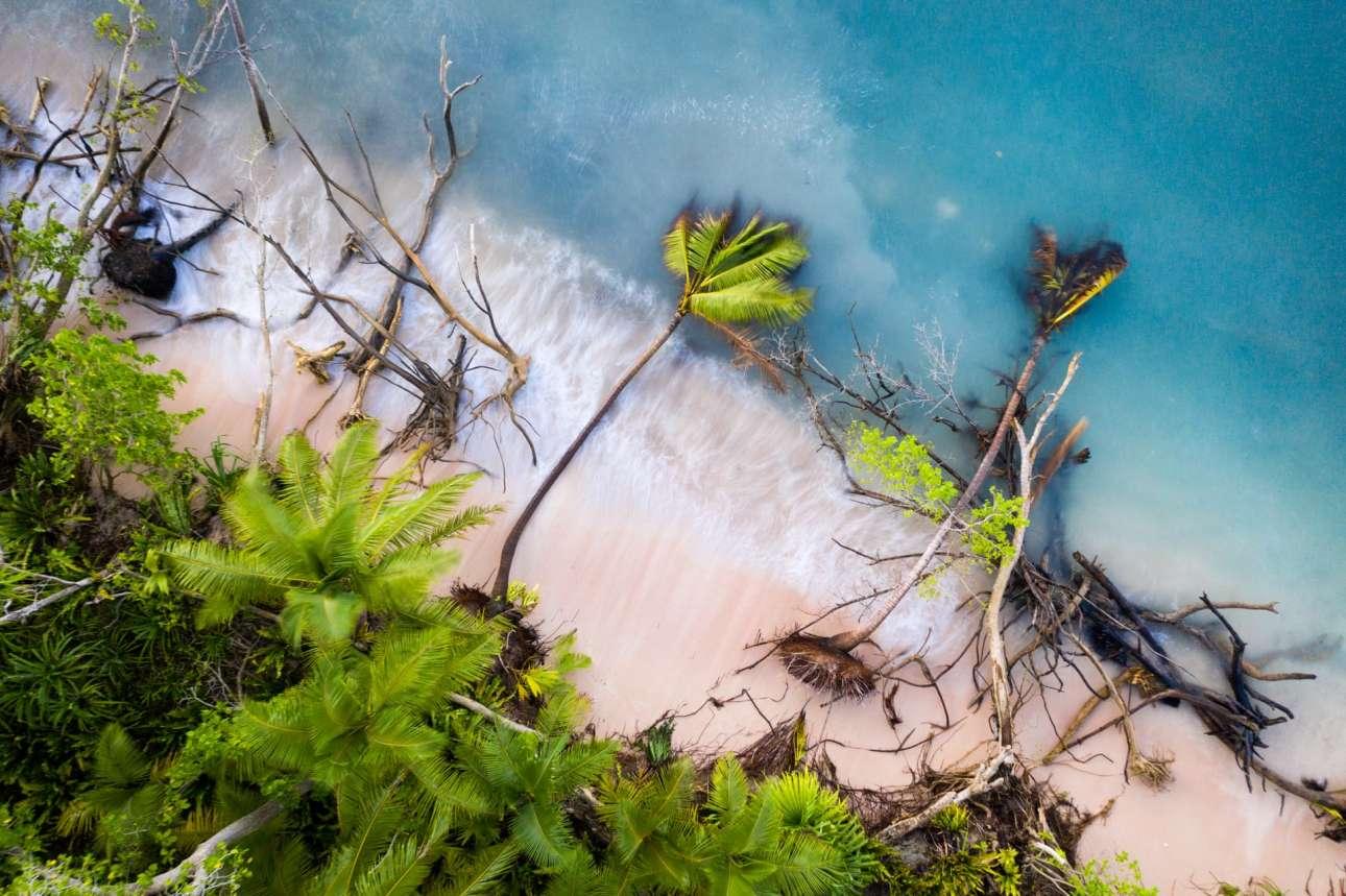 Βραβείο στην κατηγορία Περιβάλλοντα που Αλλάζουν. Πεσμένα δέντρα περικυκλώνονται από κύματα της λιμνοθάλασσας Φουναφούτι στην Τουβαλού. Η διάβρωση της γης ήταν πάντα πρόβλημα για τη χώρα του Νότιου Ειρηνικού, αλλά τα προβλήματα εντείνουνται καθώς ανεβαίνει το επίπεδο της θάλασσας και κοντεύουν να βυθιστούν εντελώς τα μικροσκοπικά νησιά του αρχιπελάγους
